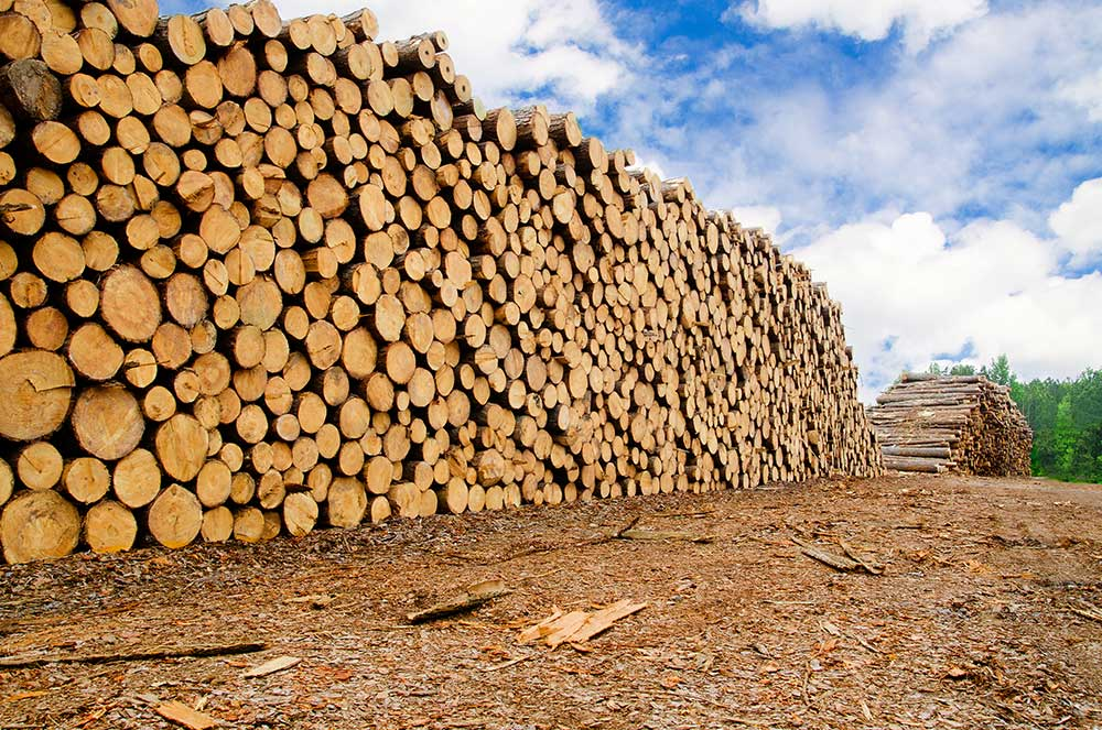 Softwood Lumber Agreement Expiration